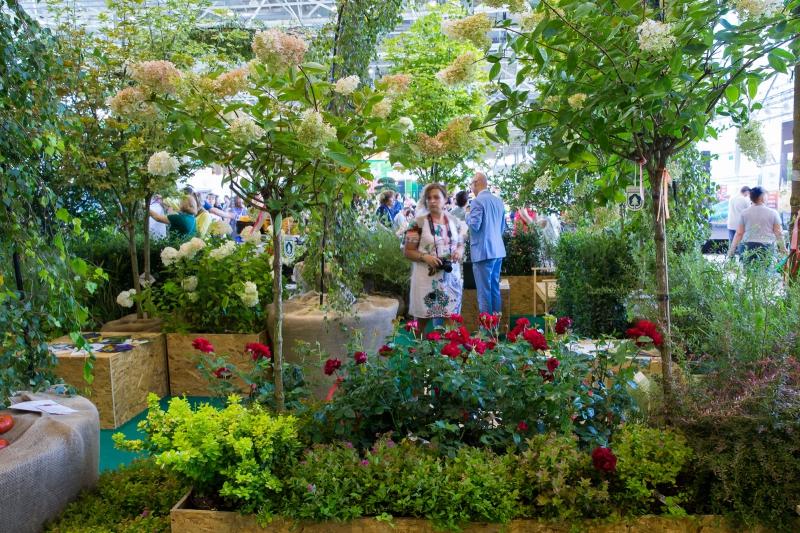 Вднх выставка цветов москва